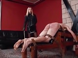 Belting, bullwhipping and caning
